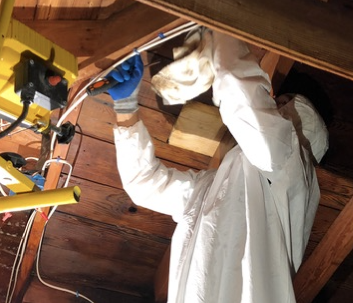 a worker in a white protective body suit in an attic