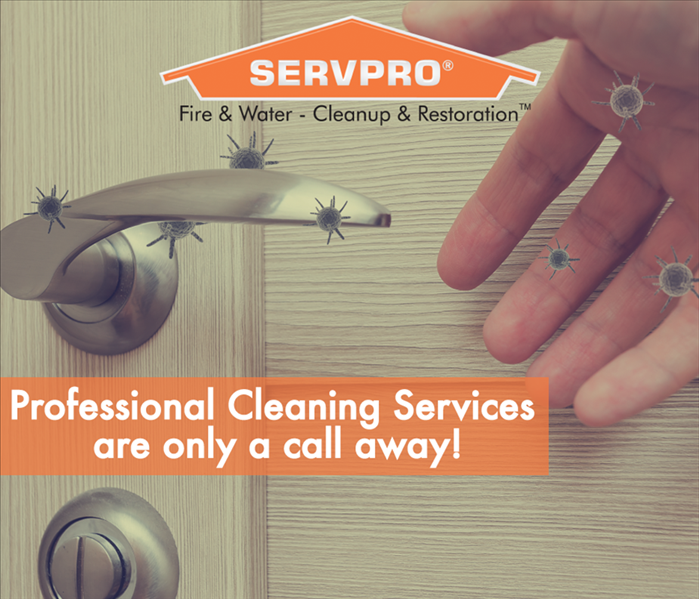 a graphic that says professional cleaning services are only a call away