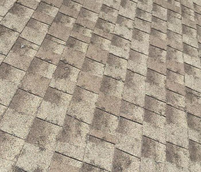 Storm Damage Your Guide to Roof Repair After Hail and Heavy Winds Damage Your Shingles
