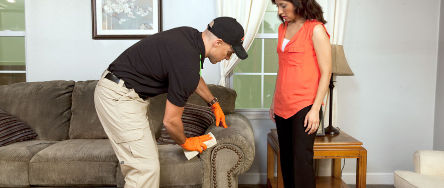 Woburn, MA carpet upholstery cleaning